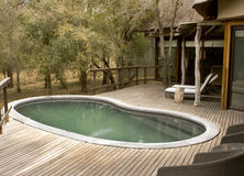 Pool on a wooden deck Stock Photography