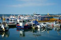 Poole Dorset Regno Unito Immagine Stock