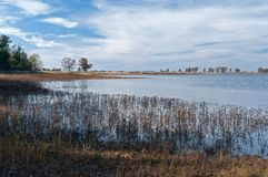 Free Pools And Marshes At Necedah Royalty Free Stock Photos - 105236828