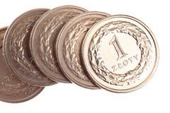 Pools geld - geïsoleerdd zloty   Royalty-vrije Stock Afbeeldingen