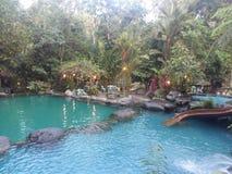 Pools im Waldlager stockfotos