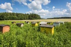 Pools landschap met bijenkorven Royalty-vrije Stock Foto