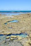 Pools of maragogi Stock Photography