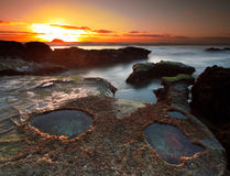 Pools at Muriwai Beach Stock Images