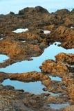 pools stenig tide Arkivbilder