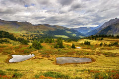 Pools will soon freeze. Small pools among the turned yellow grass in the Swiss Alpes Stock Image