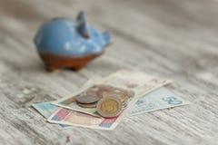 Pools zloty en spaarvarken op de houten achtergrond Royalty-vrije Stock Foto's