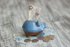 Pools zloty en spaarvarken op de houten achtergrond Stock Afbeeldingen