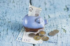 Pools zloty en spaarvarken op de houten achtergrond Royalty-vrije Stock Afbeeldingen
