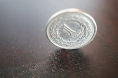 Pools zloty muntstuk Stock Foto