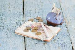 Pools zloty, spaarvarken en notitieboekje op de houten achtergrond Royalty-vrije Stock Foto's