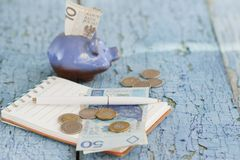 Pools zloty, spaarvarken en notitieboekje op de houten achtergrond Royalty-vrije Stock Fotografie