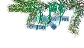 Poolse bankbiljetten op Kerstmisboom stock foto's