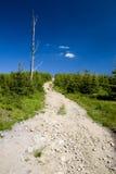 Poolse bergen Beskidy Stock Afbeeldingen