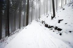 Poolse bergen tijdens de winter Royalty-vrije Stock Fotografie