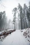 Poolse bergen tijdens de winter Royalty-vrije Stock Afbeelding