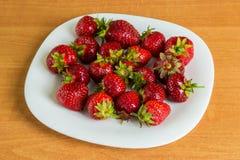 Poolse ecologische aardbeien Royalty-vrije Stock Afbeeldingen