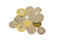 Poolse muntstukken Stock Fotografie