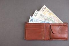 Poolse portefeuille royalty-vrije stock foto
