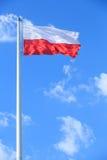 Poolse vlag Stock Afbeeldingen