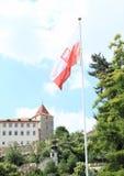 Poolse vlag Stock Foto's