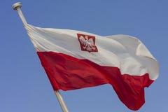 Poolse vlag Royalty-vrije Stock Fotografie