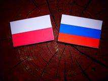 Poolse vlag met Russische vlag op een boomstomp Stock Afbeelding