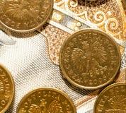 Poolse Zloty, close-up Royalty-vrije Stock Foto