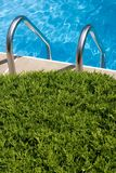 Poolside. View of inground pool ladder,waterbackground,large shrub in foreground for copy space Stock Photo