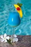 Poolside-blauer Hawaiianer lizenzfreies stockbild