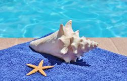 Poolside holiday scenic conch shell towel Stock Photo