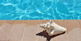 Poolside holiday scenic conch shell towel Royalty Free Stock Photos