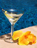 Poolside Martini Stock Image