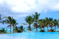 Poolside palm trees and sea Royalty Free Stock Photo