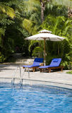 Poolside tropical Photographie stock libre de droits