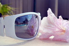 Poolside Vision. A set of sunglasses reflect the actifities in a pool at condominim resort Stock Photo
