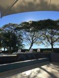 Poolsidesonnenlicht-Baum-Architekturlinien stockfoto