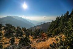 Poon wzgórze w Nepal Obraz Royalty Free