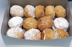 Paczkis, Donuts Dusted With Powdered Sugar and Filled. Bakers dozen of filled donuts also called Paczki's or Poonchkies Stock Photos