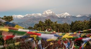 Poonhill view of Annapurnas. Warm pink and orange sunrise light over Annapurna mountain range with blue sky and beautiful clouds. Prayer flags on Poon hill in royalty free stock photography