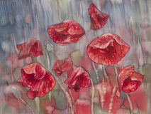 Poopies in the rain. Watercolor flowers poppies field in the rain Royalty Free Stock Photo