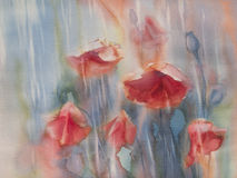 Poopies rainy day. Watercolor flowers poppies field in the rain Royalty Free Stock Photo