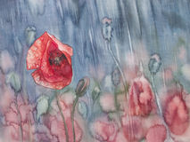 Poopy in the rain. Watercolor flowers poppies field in the rain Royalty Free Stock Image