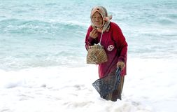 Poor old asian woman picking seashells on the ocean shore. THAILAND, March 2013. royalty free stock photo