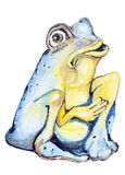 Poor blue frog Royalty Free Stock Photos