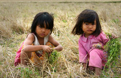 Poor child on dry grass meadow. VIET NAM, BUON ME THUOT-  DEC 31, 2012: Two Asian children with pretty face looking vegetable on dry grass meadow, poor child at Royalty Free Stock Images