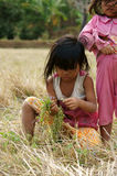 Poor child on dry grass meadow. VIET NAM, BUON ME THUOT-  DEC 31, 2012: Two Asian children with pretty face looking vegetable on dry grass meadow, poor child at Royalty Free Stock Photography