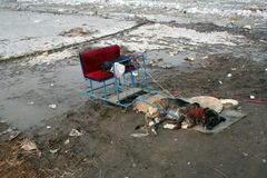 Poor dog harnessed to a small sleigh, laying down on a dirty rug surrounded by mud and trash royalty free stock photo