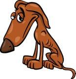 Poor hungry dog cartoon illustration Stock Photos