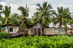 Poor huts of the natives,  indonesian poor house. Stock Photos
